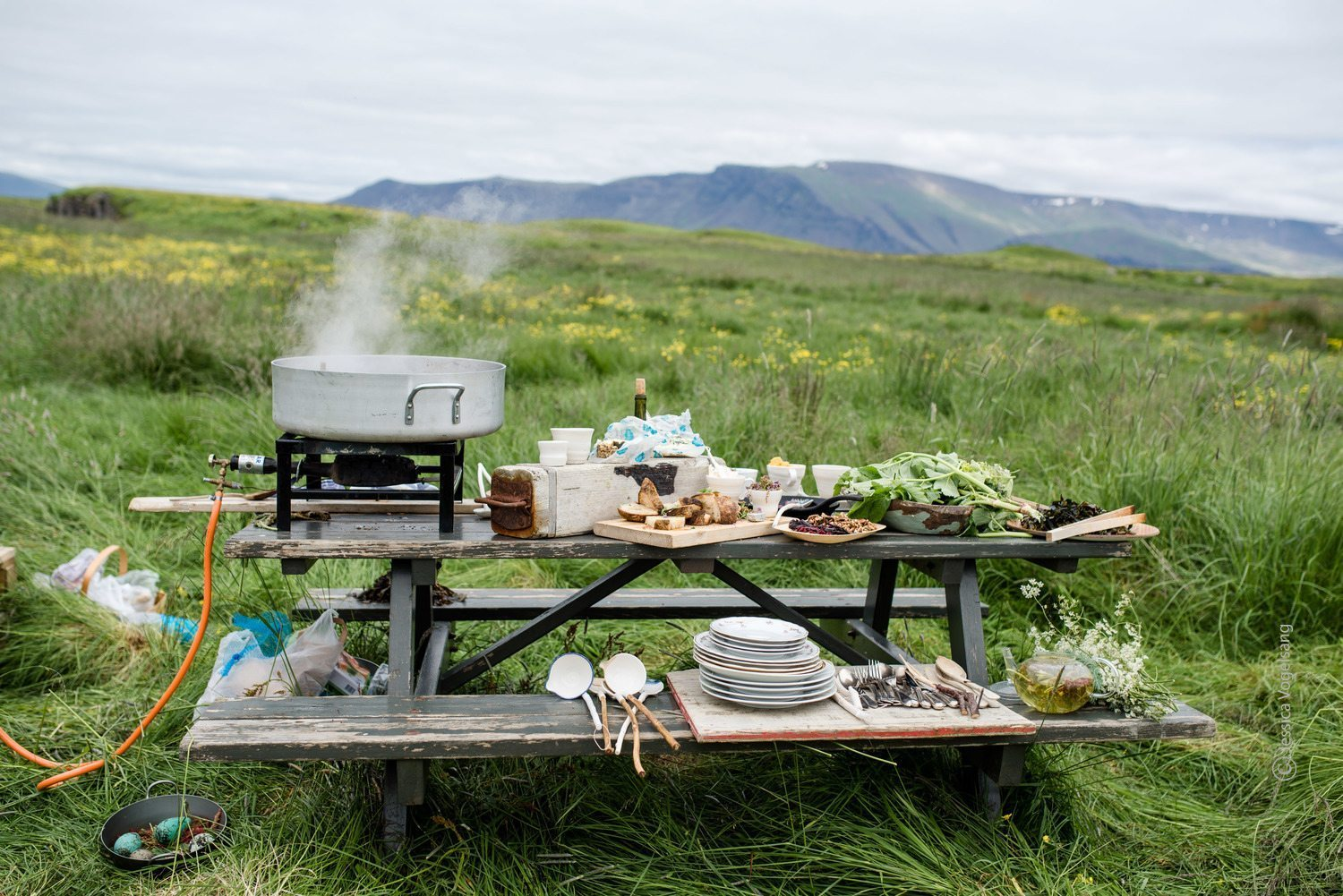 Nordic Food In Tourism